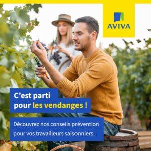 Si comme de nombreux viticulteurs vous recourez à des travailleurs saisonniers, par ici les conseils !